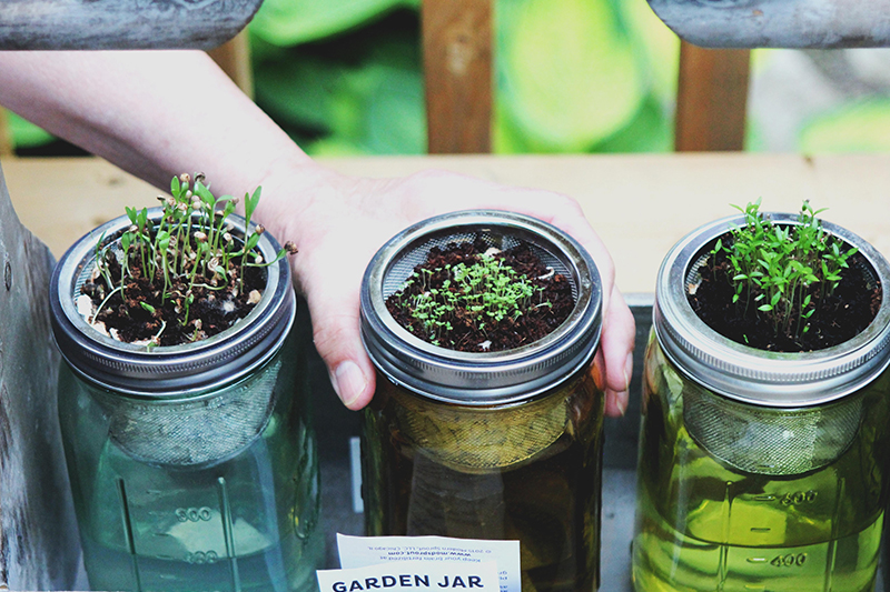 Have you got green thumbs? Find out at The Kids' Castle